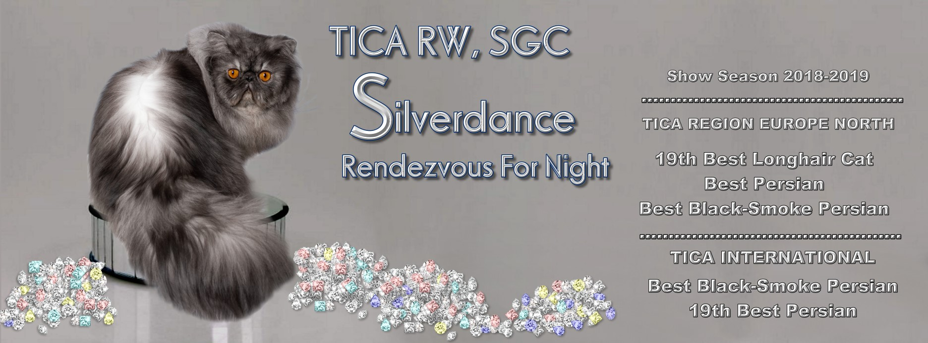 TICA RW, SGC/IC Silverdance Rendezvous For Night